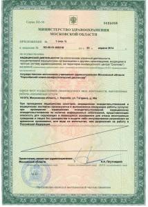Лицензия-стр-3